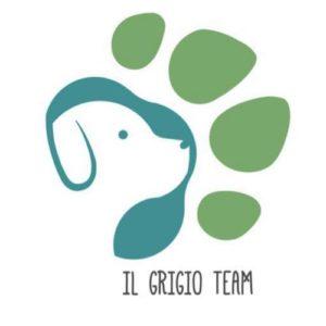 Il Grigio Team