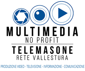 telemasone_logo